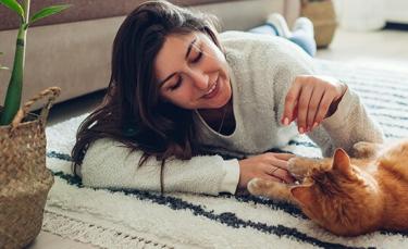 """Illustration : """"8 idées pour occuper son chat d'intérieur"""""""