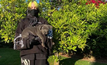 """Illustration : """"Billie Eilish, folle du chien qu'elle vient tout juste d'adopter ! """""""