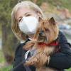 Illustration : Etude : Les chiens des Français les ont aidés à surmonter le confinement