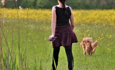 """Illustration : """"Play-Dogs, une application pour les bons plans promenades avec votre chien"""""""