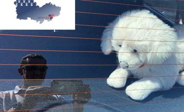 """Illustration : """"La police intervient pour sauver un chien enfermé dans une voiture. Son erreur de jugement va la mettre dans l'embarras !"""""""