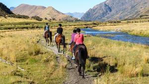 Illustration : Choisir son cheval de randonnée