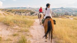 Illustration : Se balader en toute sécurité avec son cheval