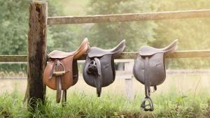 Illustration : Faire appel à un saddle fitter