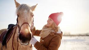 Illustration : Travailler son cheval en hiver