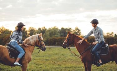 """Illustration : """"Les principales règles de sécurité à respecter à cheval et à pied"""""""