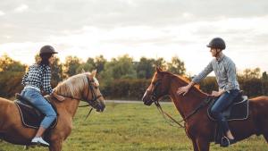 Illustration : Les principales règles de sécurité à respecter à cheval et à pied