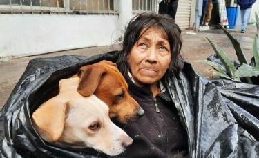 """Illustration : """"Une femme sans-abri découverte avec ses 6 chiens dans un sac poubelle refuse d'aller dans un refuge si ses animaux ne sont pas acceptés"""""""