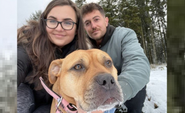 """Illustration : """"Une chienne en phase terminale d'un cancer réalise tous ses rêves dans ses derniers mois de vie avec ses propriétaires"""""""