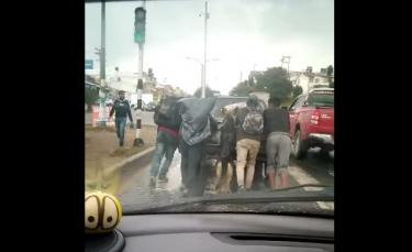 """Illustration : """"La vidéo d'un chien aidant son propriétaire à pousser sa voiture en panne, impressionne les internautes (vidéo)"""""""