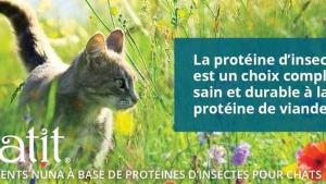 Illustration : Catit Nuna : une nouveauté dans l'alimentation premium pour chat avec des croquettes à base de protéines durables