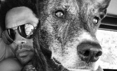 """Illustration : """"Le chanteur Lenny Kravitz partage son chagrin après la perte de son chien dans un post Instagram déchirant !"""""""
