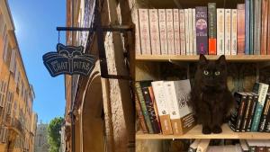 Illustration : Ronronthérapie, lecture et sensibilisation à l'adoption responsable : découvrez le concept inédit de la librairie Mon Chat Pitre