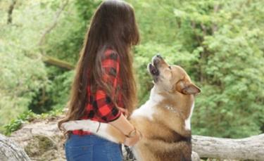 """Illustration : """"Passionnée par les animaux, une Douaisienne consacre sa carrière à aider les propriétaires et leur chien à vivre en harmonie"""""""