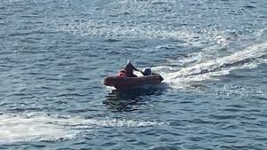 Illustration : Un navire stoppe temporairement sa traversée pour essayer de récupérer un chat tombé par-dessus bord
