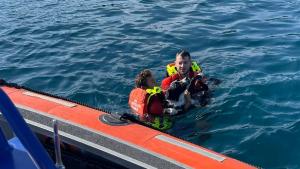 Illustration : En fugue depuis 2 jours, un chien se retrouve en mer et risque la noyade. Les sauveteurs bénévoles interviennent