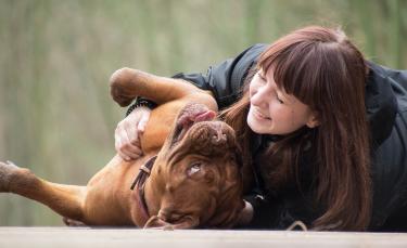 """Illustration : """"Journée mondiale du chien : 5 raisons pour lesquelles le chien est le meilleur ami de l'Homme"""""""