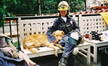 """Illustration : """"Attentats du 11 septembre : la mémoire du dernier chien de recherche dans les décombres se perpétue """""""