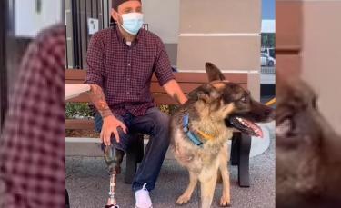 """Illustration : """"Un vétéran de guerre amputé d'une jambe raconte comment l'adoption de son Berger Allemand à 3 pattes a changé sa vie (vidéo)"""""""