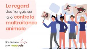 Illustration : Les Français et la cause animale : un enjeu sociétal et politique de plus en plus fort