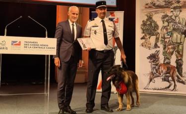 """Illustration : """"Un chien de sauvetage honoré à la mairie de Paris dans le cadre de la troisième édition des « Trophées des chiens héros »"""""""