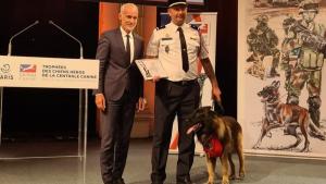 Illustration : Un chien de sauvetage honoré à la mairie de Paris dans le cadre de la troisième édition des « Trophées des chiens héros »