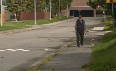 """Illustration : """"Un homme de 68 ans et son chien férus de marche ont parcouru en 8 ans l'équivalent d'un tour du monde"""""""