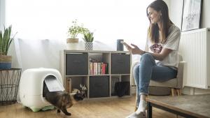 Illustration : Caremitou, la nouvelle litière connectée qui veille quotidiennement au bien-être et à la santé de votre chat