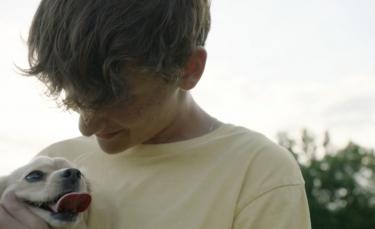 """Illustration : """"Un héros de 12 ans offre un nouveau souffle à un chien handicapé en lui fabriquant un chariot avec des briques LEGO"""""""