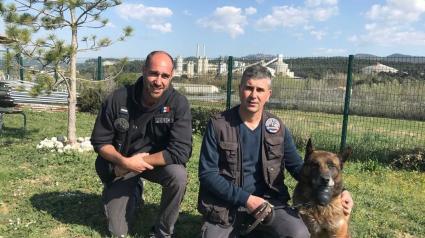 Illustration : La première maison de retraite pour les chiens policiers ouvre ses portes près de Marseille