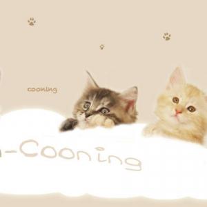 Avatar de Coon-cooning