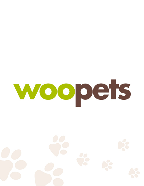 Photo : chien de race Kishu sur Woopets