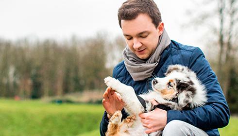 INSOLITE : Woopets révèle l'amour des Français pour leurs animaux de compagnie