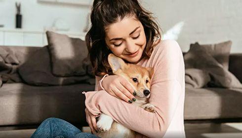 1 Français sur 2 ressent plus d'amour pour son animal que pour sa moitié