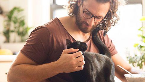 Une personne sur deux trouve davantage de réconfort auprès de son animal de compagnie que de son conjoint !