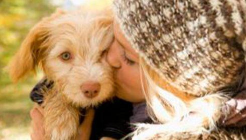 Journée mondiale des animaux dimanche 4 octobre