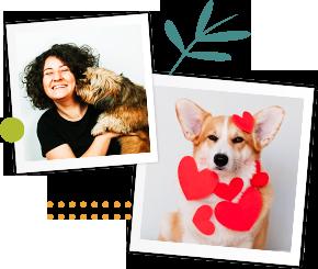 Adopter un chien : nos annonces et nos conseils