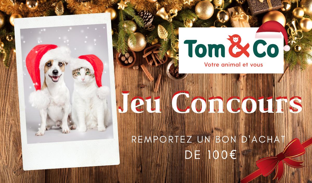Jeu concours Tom & Co du 28 novembre au 11 décembre 2019