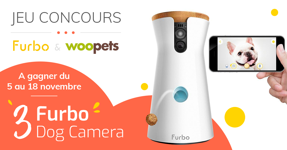 Jeu concours Furbo du 5 au 18 novembre 2018